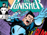 Punisher Vol 2 4