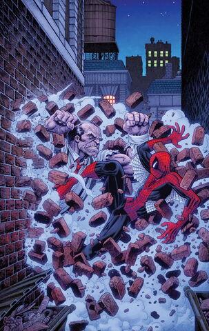 File:Amazing Spider-Man Vol 3 17.1 Textless.jpg