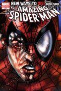 Amazing Spider-Man Vol 1 570 Ross Variant