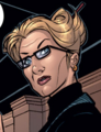 Annie Liebowitz (Earth-616) from Marvel Knights Spider-Man Vol 1 2 001.png