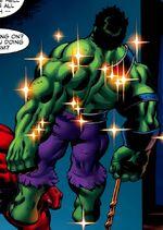 Bruce Banner (Earth-90512) from Hulk Vol 2 12 001