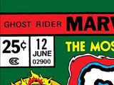 Ghost Rider Vol 2 12