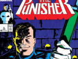 Punisher Vol 2 5