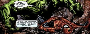 Bruce Banner (Earth-616) and Peter Parker (Earth-616) from Fallen Son The Death of Captain America Vol 1 4 0001