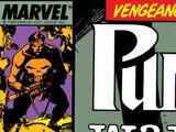 Punisher War Journal Vol 1 13