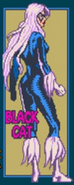 Felicia Hardy (Earth-TRN332) from Spider-Man (1991 video game) 001