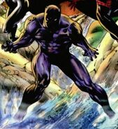 T'Challa (Earth-13519) from Marvel Universe Millennial Visions Vol 1 1 001