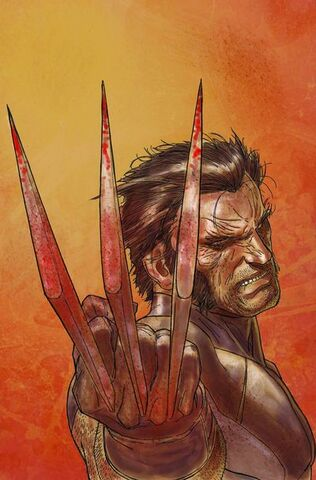 File:Wolverine Weapon X Vol 1 1 Textless.jpg