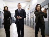 Marvel's Agents of S.H.I.E.L.D. Season 4 5
