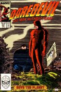 Daredevil Vol 1 251