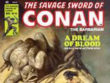 Savage Sword of Conan Vol 1 40