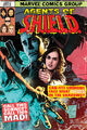 Marvel's Agents of S.H.I.E.L.D. Season 2 21 by Sook.jpg