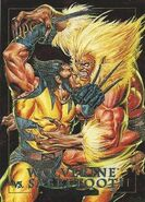 James Howlett and Victor Creed (Earth-616) from Marvel Masterpieces Trading Cards 1992 Battle Cards 0001
