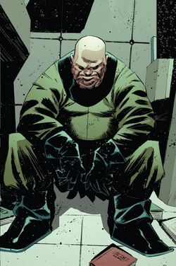 Artur Zarrko (Earth-6297) from Indestructible Hulk Vol 1 11 001