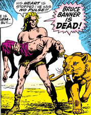 Bruce Banner (Earth-616), Kevin Plunder (Earth-616) and Zabu (Earth-616) from Incredible Hulk Vol 1 110 0001