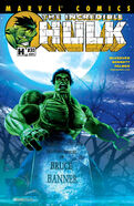 Incredible Hulk Vol 2 30