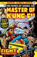 Master of Kung Fu 39