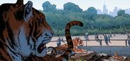 Bronx Zoo from Invincible Iron Man Vol 3 2 001