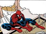 Spider-Man Newspaper Strips Vol 1 2008