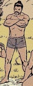 Hogun (Earth-TRN664) from Deadpool Kills the Marvel Universe Vol 1 1 001