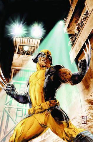 File:Wolverine Origins Vol 1 42 Textless.jpg