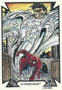 Peter Parker and Morris Bench (Earth-616) from Todd Macfarlane (Trading Cards) 0001