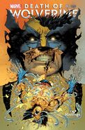 Death of Wolverine Vol 1 3 Hastings Exclusive Variant