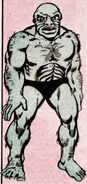 Rajaks from Official Handbook of the Marvel Universe Vol 1 8 001