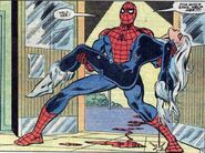 Peter Parker (Earth-616) and Felicia Hardy (Earth-616) from Peter Parker, The Spectacular Spider-Man Vol 1 76 002