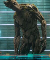 Groot (Earth-199999) from Guardians of the Galaxy (film) 002