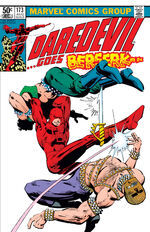 Daredevil Vol 1 173