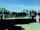 Memorial Park Cemetery/Gallery