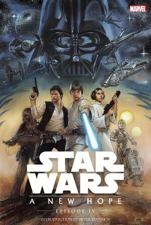 Star Wars Episode IV A New Hope Vol 1 1
