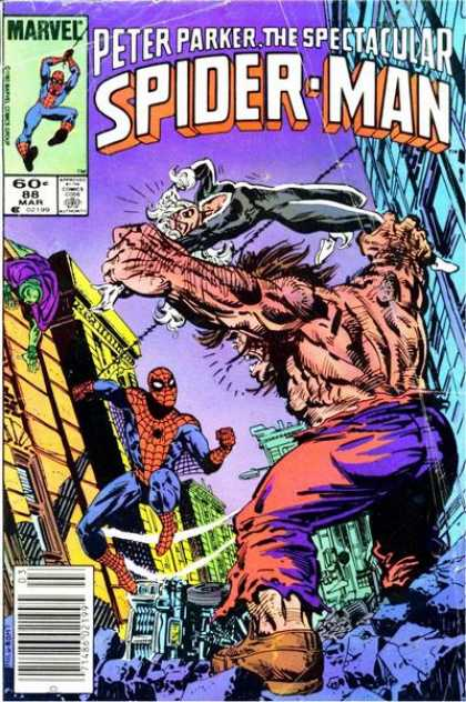 Peter Parker, The Spectacular Spider-Man Vol 1 88.jpg