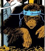 Neo-Apes from Iron Man Vol 1 79 0001