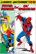 Peter Parker (Earth-616) from Amazing Spider-Man Vol 1 20 001