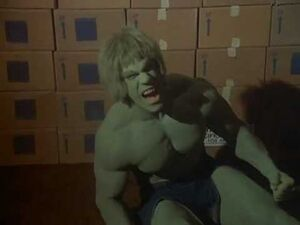 David Banner (Earth-400005) from The Incredible Hulk (TV series) Season 4 14 001
