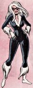 Felicia Hardy (Earth-616) from Official Handbook of the Marvel Universe Vol 1 2 0001