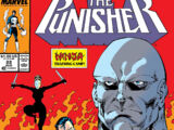 Punisher Vol 2 22