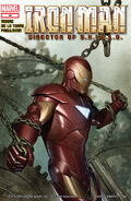 Iron Man Director of S.H.I.E.L.D. Vol 1 29