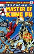 Master of Kung Fu 36