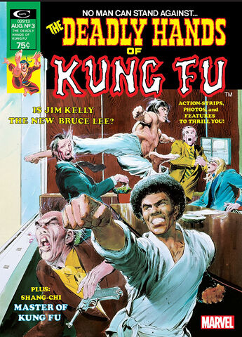 File:Deadly Hands of Kung Fu Vol 1 3.jpg