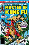 Master of Kung Fu 46