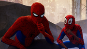 Peter Parker (Earth-TRN701) and Miles Morales (Earth-TRN700) from Spider-Man Into the Spider-Verse 001
