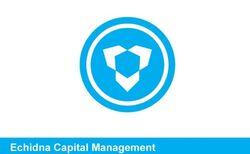 Echidna Capital Management (Earth-616) from Secret Warriors Vol 1 1