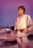 Star Wars Vol 2 29 Star Wars 40th Anniversary Variant Textless