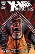X-Men Origins Wolverine Vol 1 1