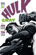 Hulk Gray Vol 1 3