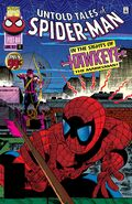Untold Tales of Spider-Man Vol 1 17