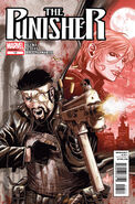 Punisher Vol 9 13